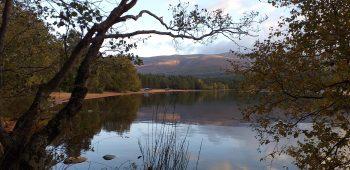 Loch Morlich in Autumn